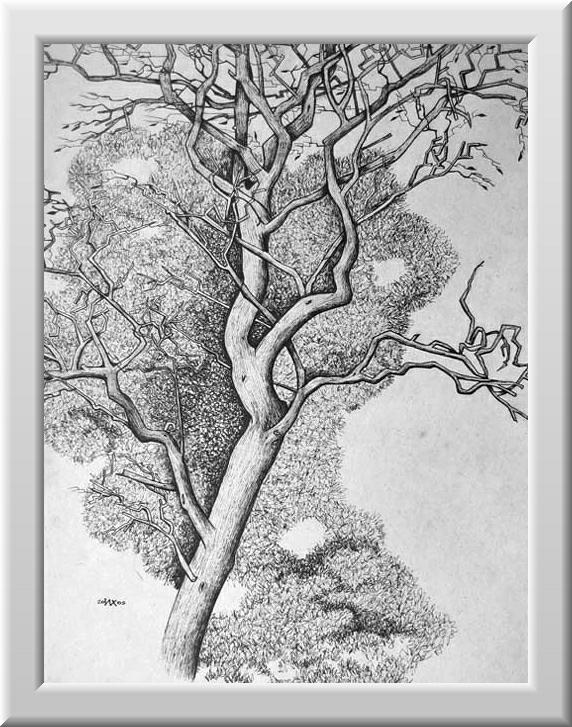 Хохрин Илья. Мёртвое дерево